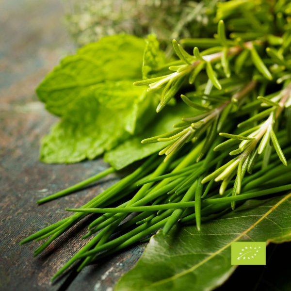 Hierbas provenzales ecológicas a granel