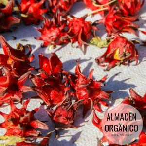 flor de hibisco ecológicas