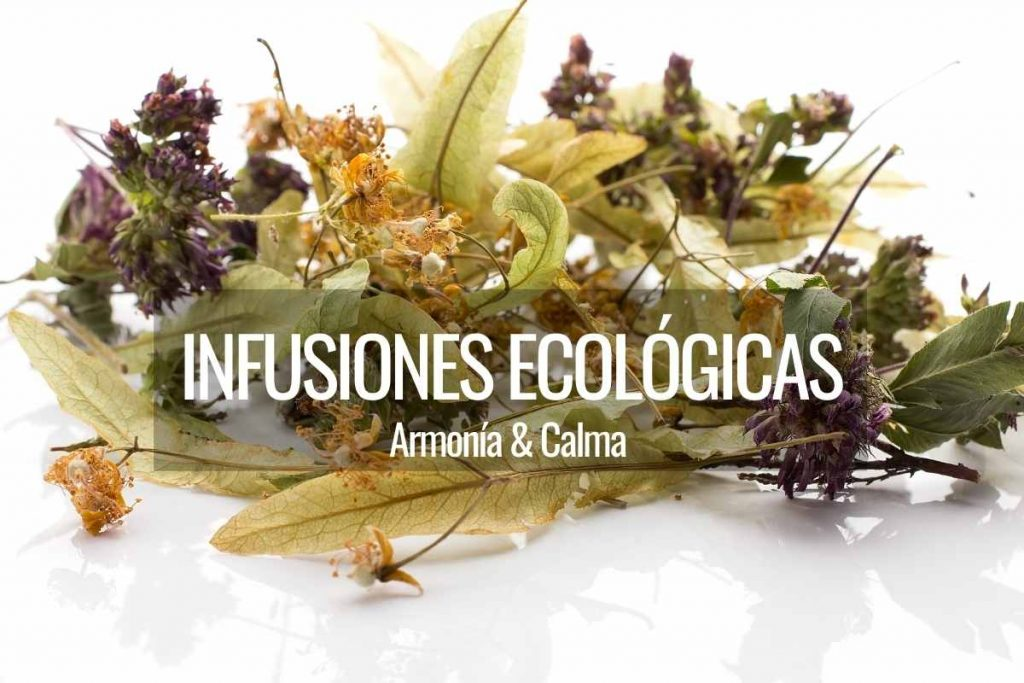 infusiones ecologicas a granel
