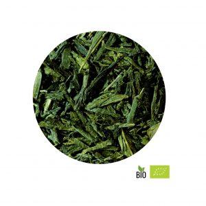 te-verde-ecologico-bancha